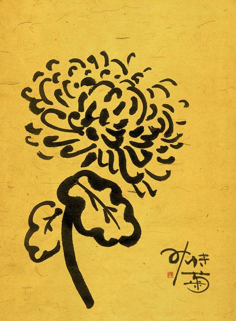 祖母みゆきの菊
