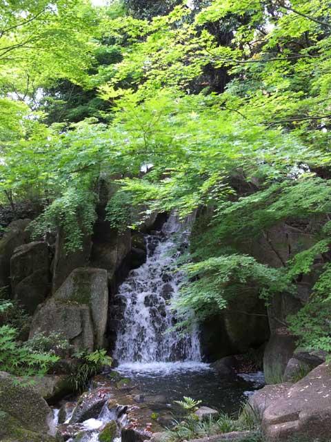 木曽根の瀧